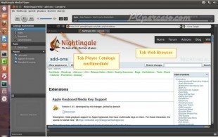 PCpercaso.com :: Nightingale - Web Browser
